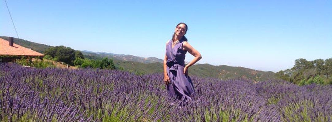 Solano-Yolo Lavender Trail