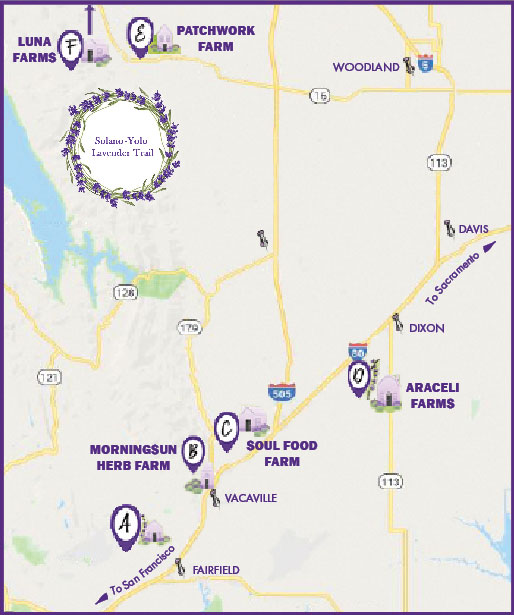 Lavender Trail Map