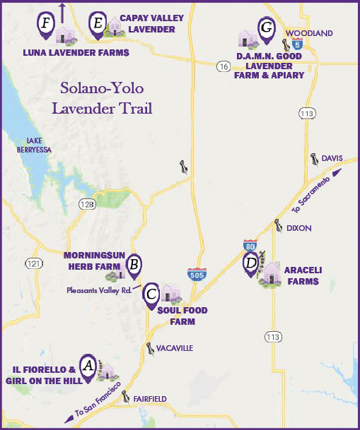 Lavender Trail Map